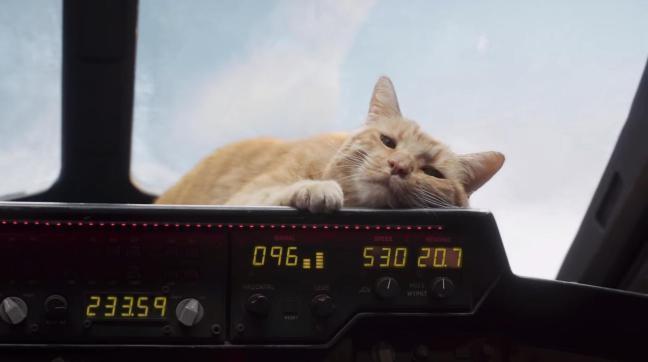 captain-marvel-goose-the-cat